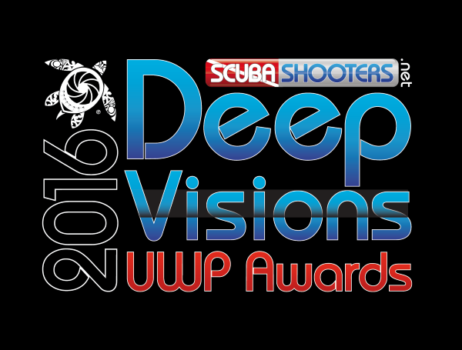 Underwater photography contest DEEP VISION 2016