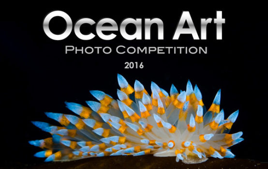 Ocean Art Contest logo 2016