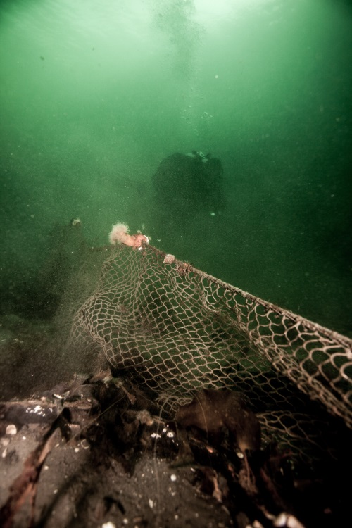 Removing a ghost net in Nesodden - Norway