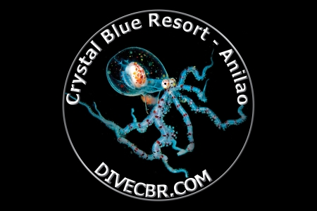 crystal-blue-resort