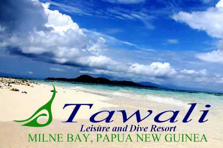 Cover Tawali Resort Diving & resort