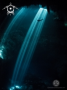 A Light beams at the Pit Cenote