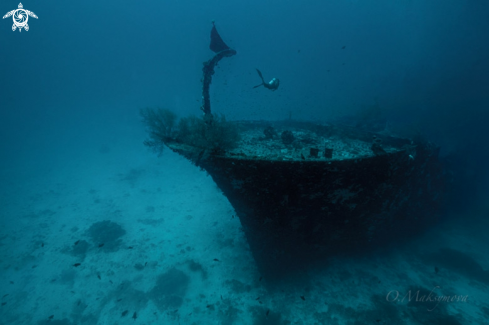 The Kuda giri wreck, south Male Atoll