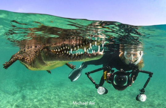 Diving with crocodiles in Cuba