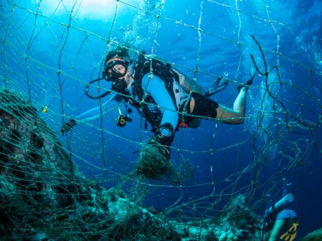 Nets in Samran Pinnacle - Gulf of Thailand