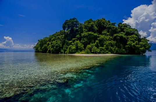 Papua New Guinea Panorama